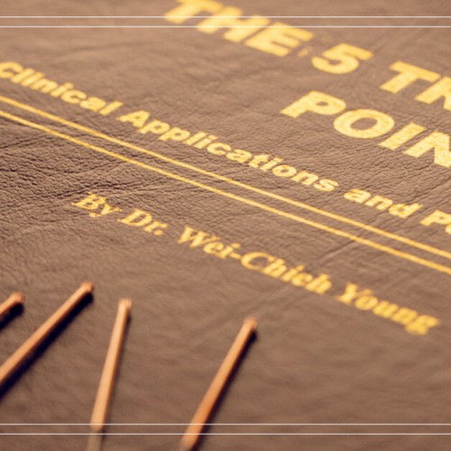 JUAN-FRANCISCO-CORNEJO-PINTO--medicina-china--acupuntura-BIBLIOTECA-