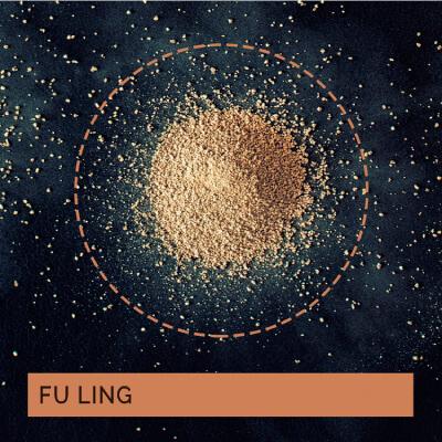 JUAN-FRANCISCO-CORNEJO-PINTO-medicina-china-acupuntura-fu-ling